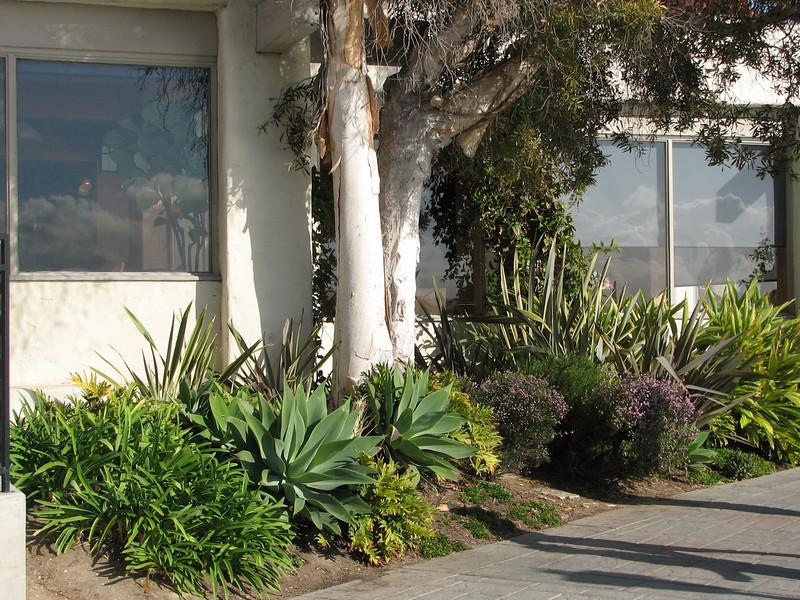 Seaport Village - San Diego 2-13-07