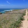 9970_Windy Point trail_03-19-15.JPG