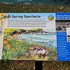 9918_Disney Point sign_Point Buchon Trail_03-19-15.JPG