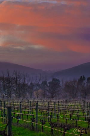 WC-HWY116_1046-HDR