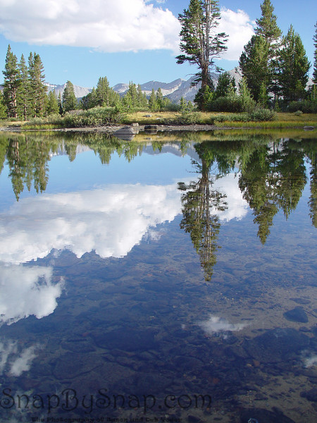 This is a snow melt pond high in the Sierra mountains of Yosemite.