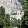 El Capitan and trees.