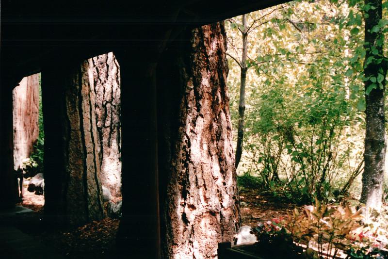 Ahwahnee Hotel Entry Walkway - Yosemite National Park  9-9-03