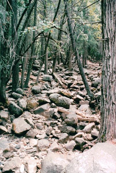 Near Bridalveil Falls - Yosemite National Park  9-9-03