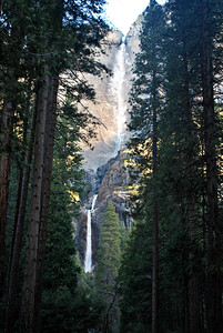 Lower and Upper Yosemite Falls through the trees.