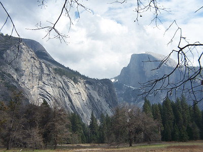 Half Dome viewed from Cook's Meadow.