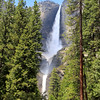2019-06-13_159_Yosemite Valley_Upper & Lower Yosemite Falls V.JPG<br /> <br /> <br /> The force of Upper & Lower Yosemite Falls was so strong that it was blowing off people's hats, sunglasses, etc., not to mention soaking many cameras!