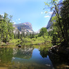 2019-06-13_137_Yosemite Valley_Mirror Lake.JPG<br /> <br /> Over a few decades, we have watched Mirror Lake go from a spectacular lake of reflections to a meadow and now, back to a lake full of reflections!