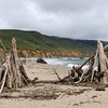 2019-06-20_399_Big Sur_Andrew Molera SB.JPG<br /> <br /> This beach must get some wild storms every winter to bring up all of these logs!