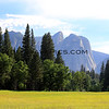 2019-06-11_77_Yosemite Valley.JPG