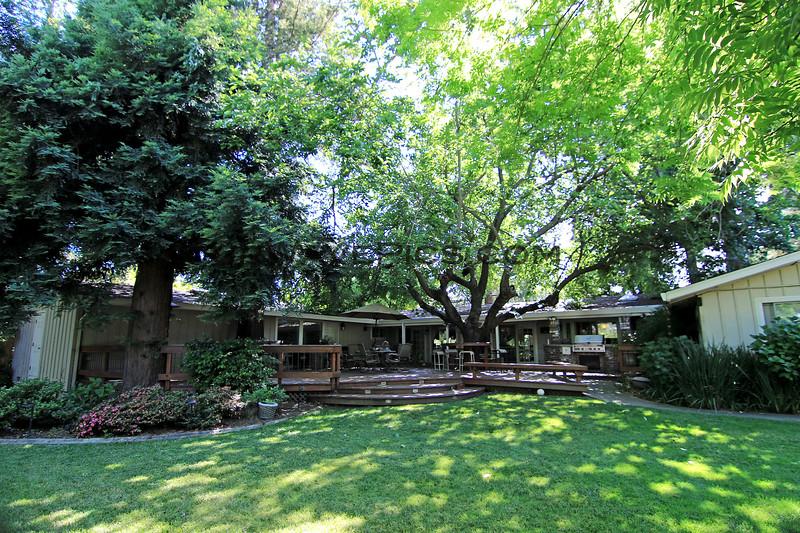 2019-06-16_220_Sacramento_Donna's Backyard.JPG