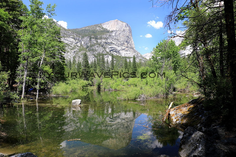 2019-06-12_119_Yosemite Valley_Mirror Lake.JPG