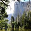 2019-06-11_70_Yosemite Valley_El Capitan V.JPG