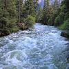 2019-06-11_82_Yosemite Valley_Merced River V.JPG