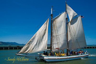 The scow schooner Alma sets sail on San Francisco Bay.