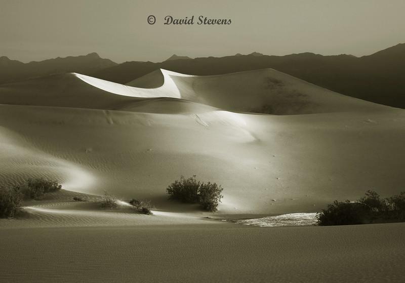 First light on tallest dune