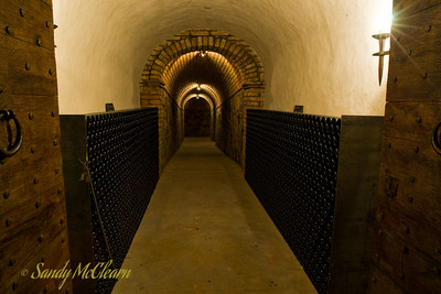 A wine cellar lined with wine bottles at the Castello di Amorosa.