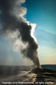 Not quite Old Faithful at Yellowstone