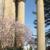 Palace of Fine Arts Collonades in Spring.