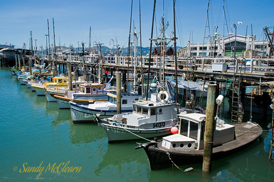 The fishing and pleasure boat fleet docked at Fisherman's Wharf.