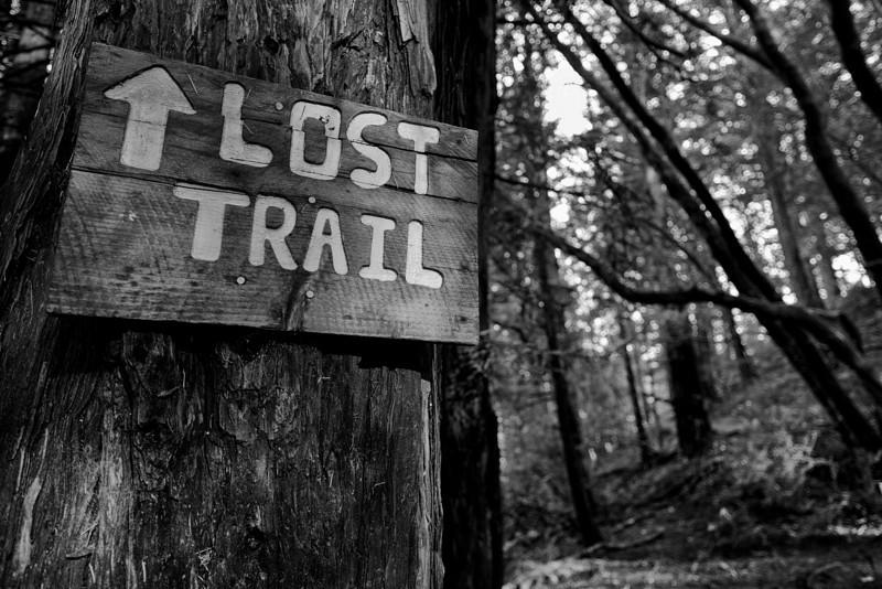 Found it. - Mill Valley, CA