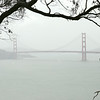 Golden Gate in the mist.