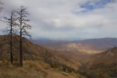 CA-San Diego-Mt. Laguna