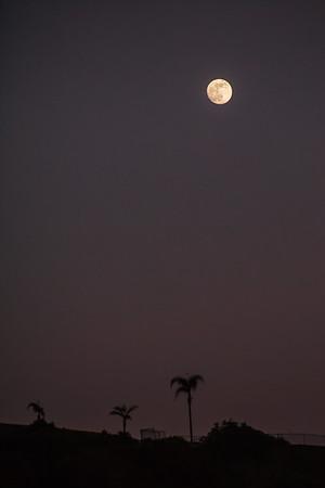 CA-San Diego-Sunset Cliffs