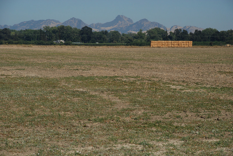 """<span id=""""title"""">Sutter Buttes </span> An empty field with the Sutter Buttes in the background. They're the only non-flat thing in the central valley."""