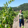 "<span id=""title"">Ann in Vineyard, Sonoma </span>"
