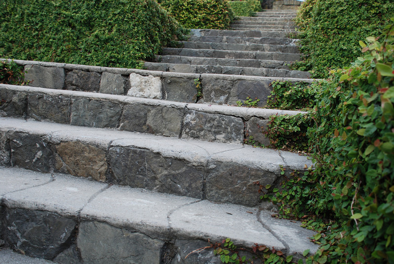 "<span id=""title"">Steps in Berkeley Rose Garden </span>"