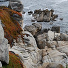 "<span id=""title"">Dramatic Coast on Pebble Beach </span> Not so much a beach at this point, but it's pretty cool."