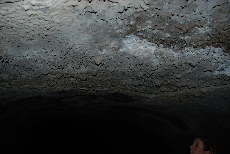 """<span id=""""title"""">Lava Tube Ceiling </span> Lava drips from the ceiling are neat!"""