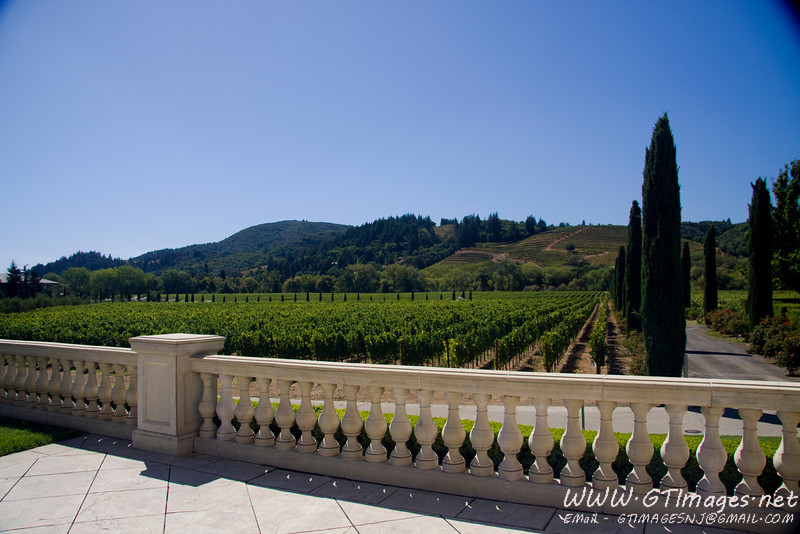 Ferrari - Carano Vineyards. This place had great grounds, and gardens.