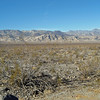 Death Valley from Emigrant turnout