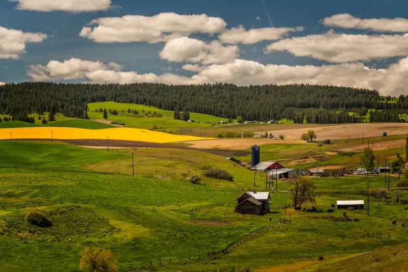 Camas Prairie Farmland