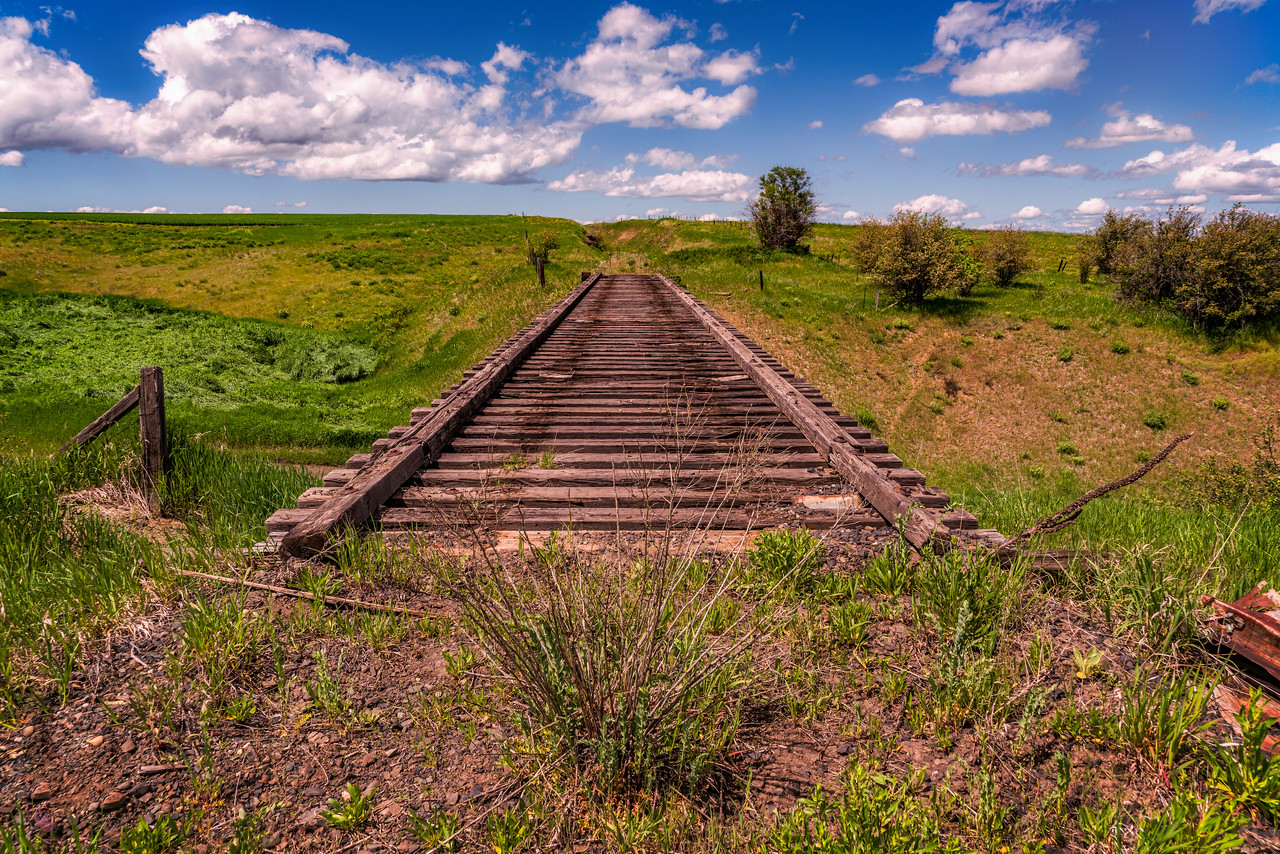 Weathered Trestle