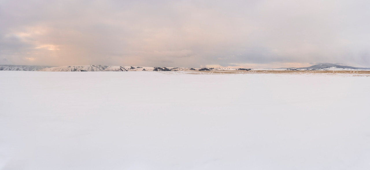 Panorama of the snowy prairie