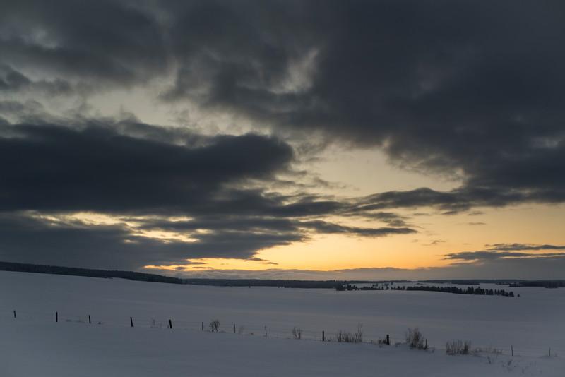 Rolling Fields Of Snow