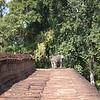 East Mebon guarded by elephants