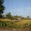 Picturesque Cambodian countryside