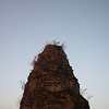 Pre Rup in the evening