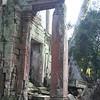 Pillars at Ta Prohm