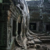 Nature and architecture coexist at Ta Prohm. One of the most photographed views of the temple.