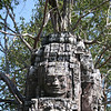 Buddge (or kings face) atop a Tower at Ta Som. Nature and architecture learn to coexist!