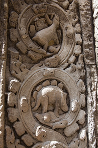 This is supposed to be a carving of a dinosaur on one of the walls at Ta Prohm. The coloration of this section was quite a bit lighter than the surrounding sections, so it very well may have been a fake. \