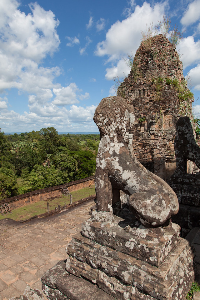 A view of the jungle from atop the temple of Pre Rup. The steep stairs are guarded at the top by lions.