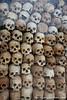 Human Skulls in Memorial