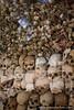 Human Bones and Skulls in Memorial