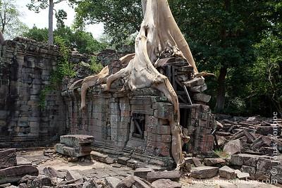 Siem Reap. Preah Khan